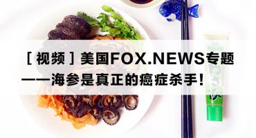 美国FOX.NEWS专题:海参是真正的癌症杀手!