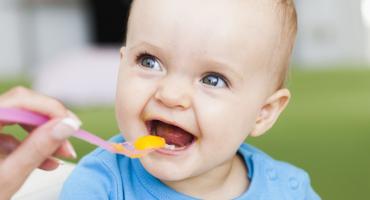 儿童如何科学吃海参?